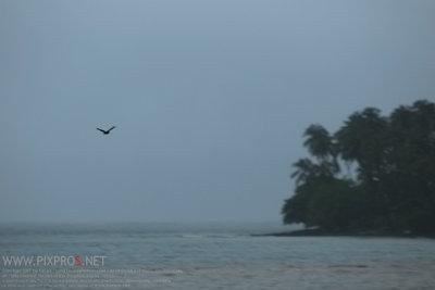 เกาะหมาก ตราด