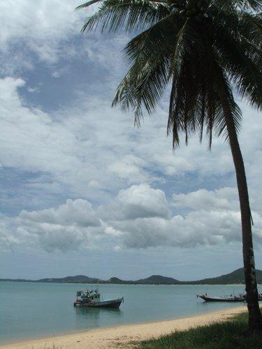 เกาะพะงัน