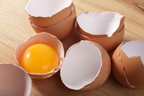 ิกินเจ กินไข่ได้ไหม